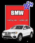 باتری ماشین BMW X4