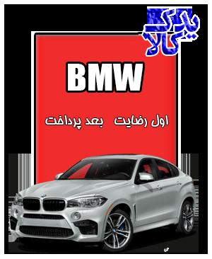 باتری ماشین BMW X6